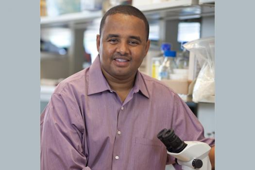 Mohamed Farah, Ph.D.