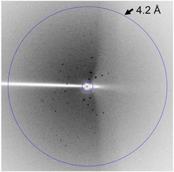 In this X-ray diffraction image, the pattern of dots can be used to extract information about the size, shape and structure of the MMD2 RNA.