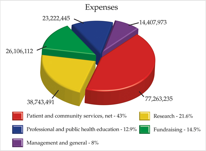 2010 Annual Report Chart of Expenses