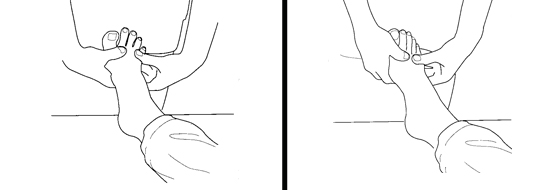 Illustration of an exercise for the toes