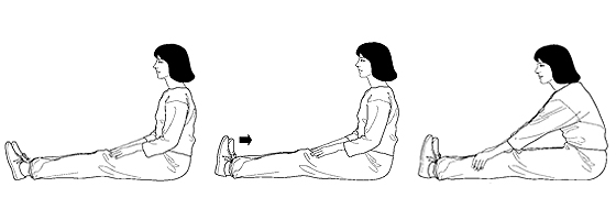 Illustrations of basic stretches