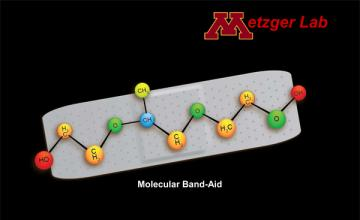 "Joseph Metzger (DMD/BMD): illustration of a molecular ""Band-Aid"""
