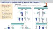 How Genetic Neuromuscular Disease Happens
